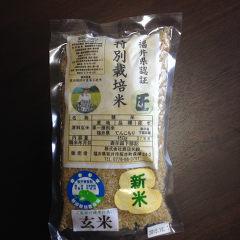 hukui_otameshi