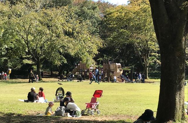 ファミリーパーク-芝生公園